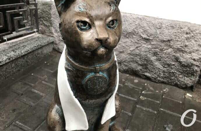 В Одессе появился кот-джентельмен – в белом шарфе и с медалью (фото)