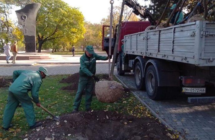Что высаживают на одесских улицах? (фото)