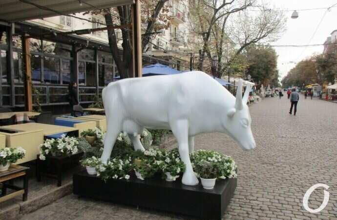 Одесская корова Ромина покидала Дерибасовскую на повозке и с почетным эскортом (видео)