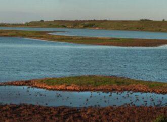 В Одесской области пересохло устье реки Тилигул – чем это грозит?