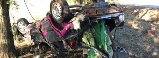 На Одесчине Volvo-«перевертыш» убил водителя и травмировал пассажира