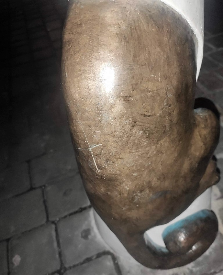 кот-джентльмен стал жертвой вандала