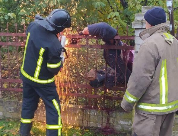 В Одесской области мужчину проткнул забор: вмешались спасатели (фото)