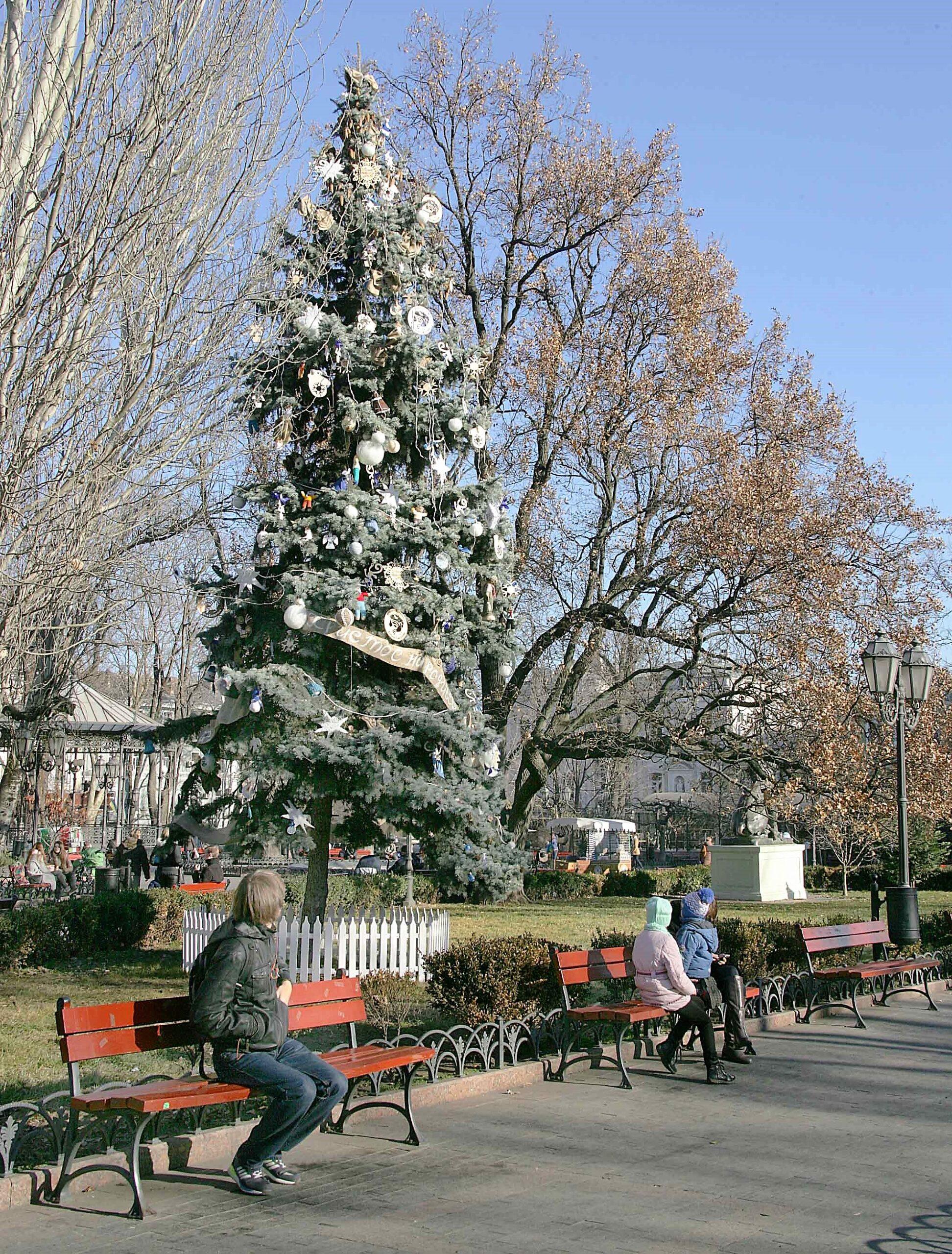 елка, Горсад