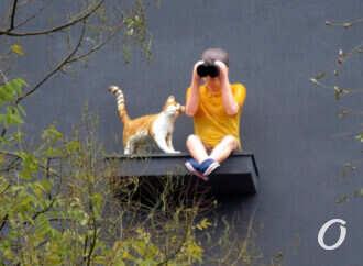 На новом одесском доме поселился любопытный юноша с биноклем и котом (фото)
