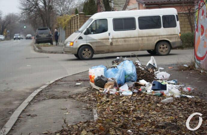 Одесская улица Чубаевская: мусора много, а тротуаров нет (фото)