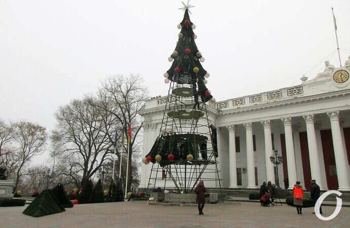 Две главные елки Одессы: одну монтируют, вторую наряжают (фото)