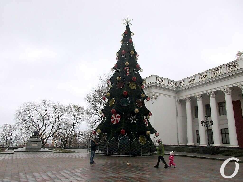 Одесса предновогодняя, елка у мэрии