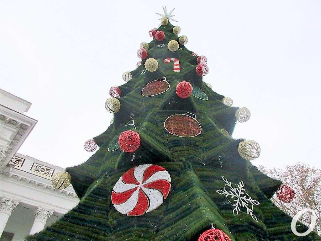 Одесса предновогодняя, елка наряжена