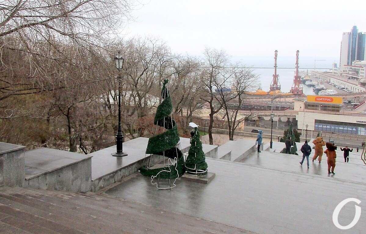 Одесса предновогодняя, елки
