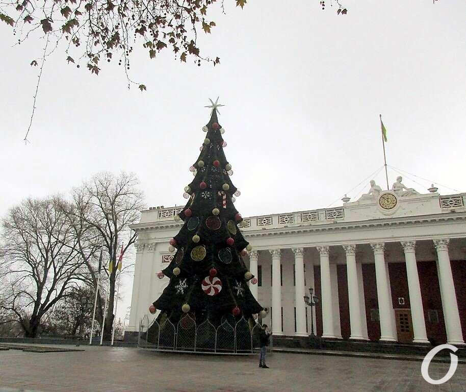 Одесса предновогодняя, главная елка