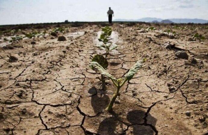 На пути к пустыне: какова цена воды в бессарабских степях?