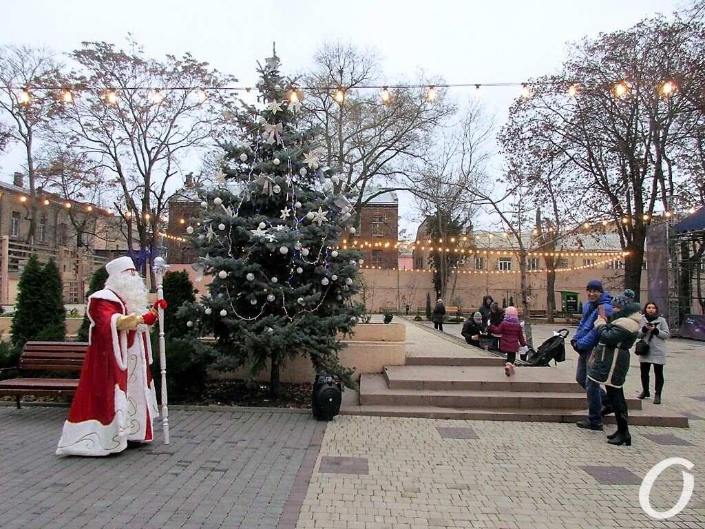 Одесские елки, горсад