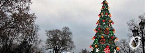 Одесские елки зажгли огни: в городе стартовали рождественско-новогодние праздники-гуляния (фото)