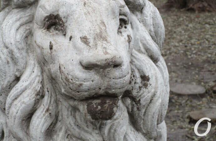 В одесском сквере «расстреляли» каменных львов (фото)