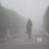 Погода в Одессе 7 апреля: дождливо и туманно