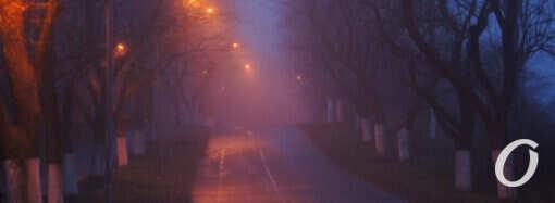 Погода в Одессе 2 февраля: каким будет «день сурка»?