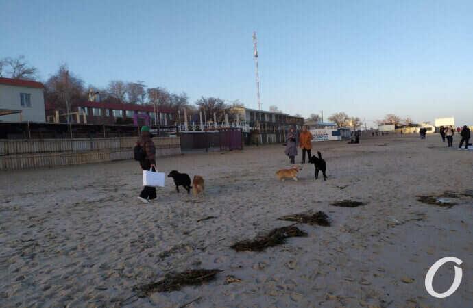 Прогноз погоды на 25 февраля: в Одессе существенно потеплеет