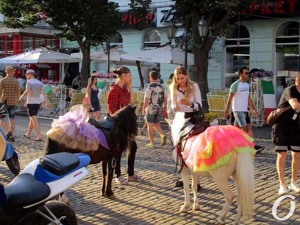 Дерибасовская-2020, июль, пони