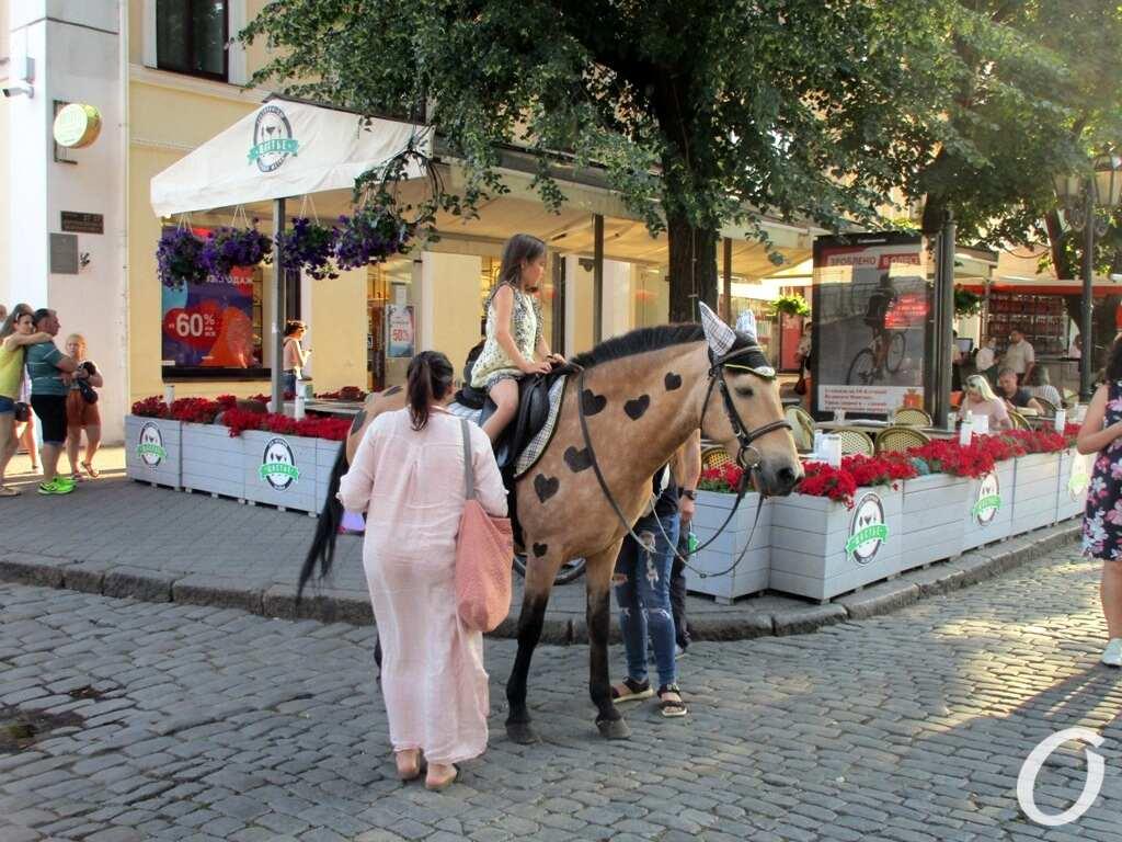 Дерибасовская-2020, июль, лошадка