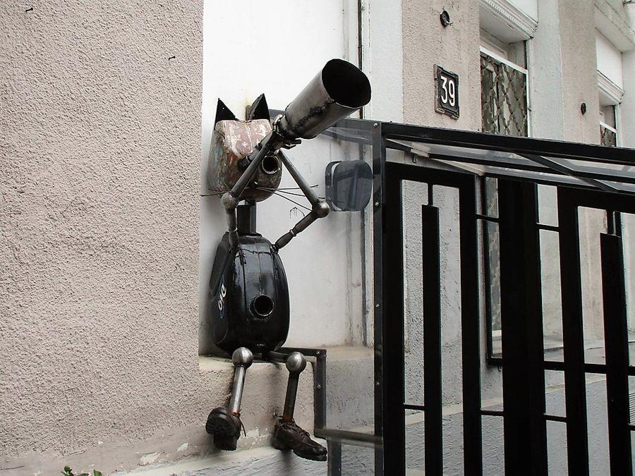 кот-астроном одесса