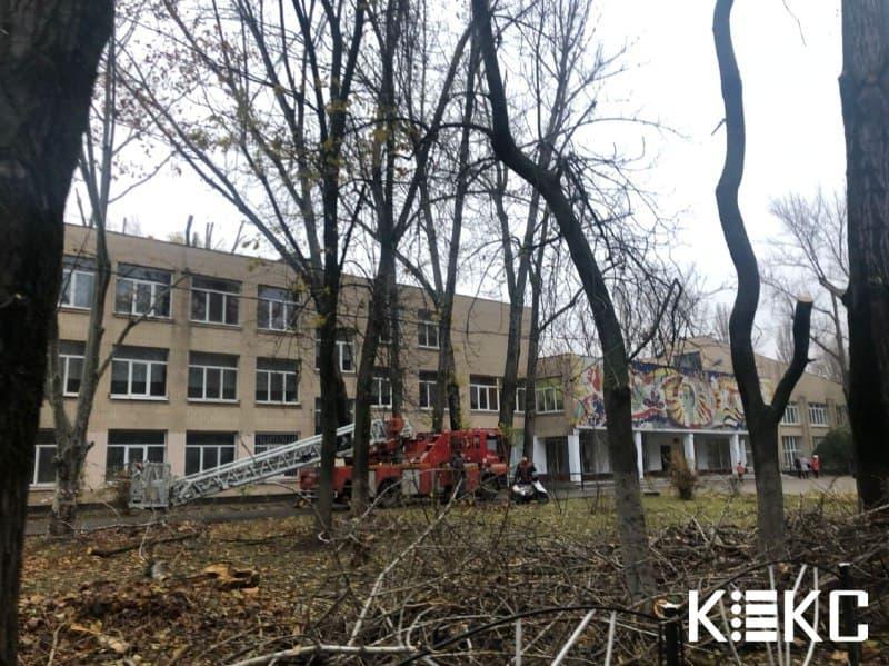 обрзали деревья возле школы
