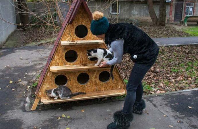 Под Одессой возвели «многоэтажку» для хвостатых (фото)