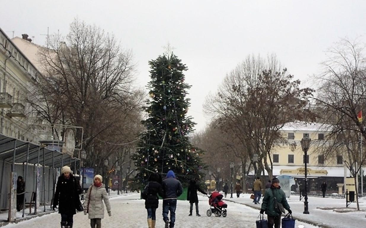 елка на Дерибасовской, 2013 год