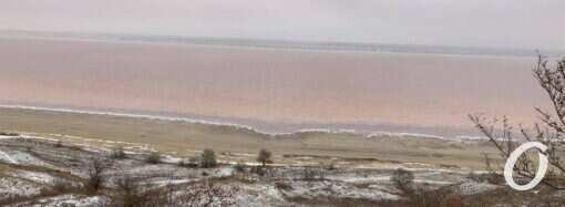 Куяльницкий лиман до сих пор питают морской водой – экологи против