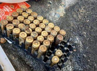 В порту Одессы пограничный пес нашел 150 патронов в багажнике авто (видео)