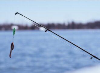 В пруд одесского парка выпустили еще 200 кг рыбы (видео)