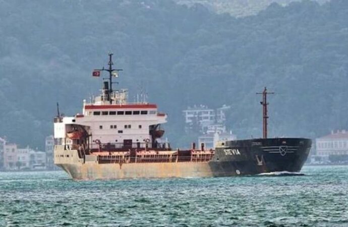 В Украину вернулись моряки с судна Stevia, захваченного пиратами