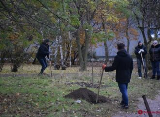 В Одессе высаживают аллею в честь погибших на Донбассе женщин-АТОшниц