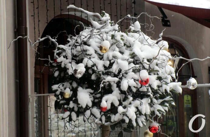 Какая погода ждет одесситов на Старый новый год?