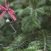 Какая польза от ненужной елки? – советы для дома