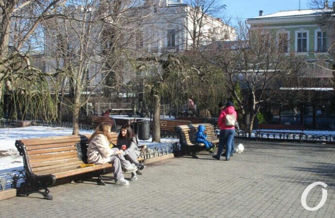 Погода в Одессе 23 января: по-весеннему тепло