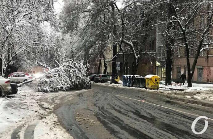 Снегопад, деревопад и новый забор: что происходило в Одессе 27 января