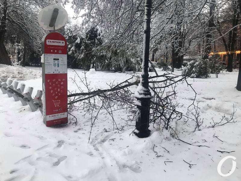 деревопад в Одессе, Таврия