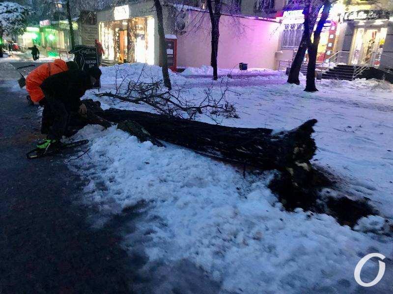 деревопад в Одессе, вечер