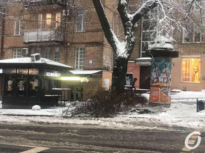 деревопад в Одессе, кофейна