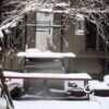Погода в Одессе портится: снег может пойти уже к вечеру