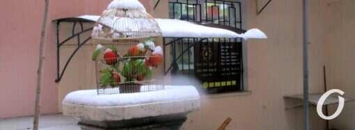 Одесситов ждут погодные «качели» – что прогнозируют синоптики?