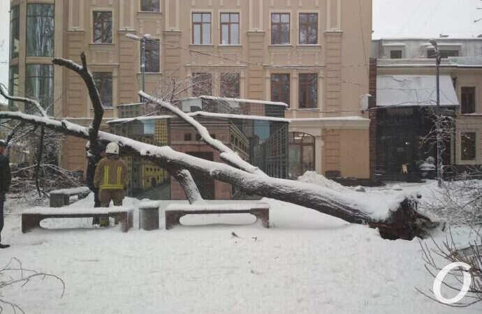 Что наделала в Одессе непогода – фоторепортаж