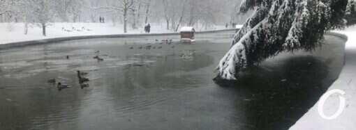 Последний день января в Одессе: что преподнесет погода?