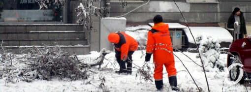 Снегопад по-одесски: россыпи веток и люди с лопатами (фоторепортаж)