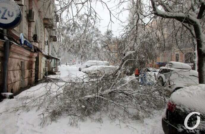 В Одесской области энергетики полностью ликвидировали аварии после снегопада