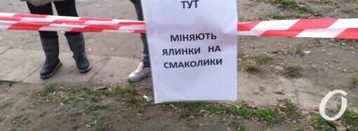 В Одессе приемщик ёлок обматерил маленьких сладкоежек