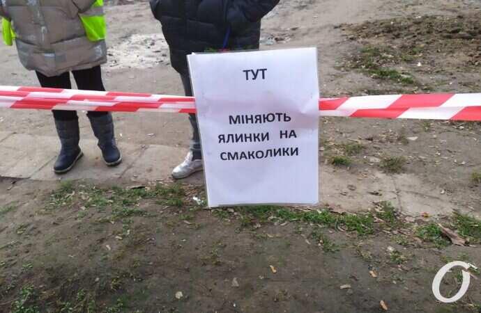 Елка в обмен на конфеты: в Одессе началась акция по сбору новогодних деревьев