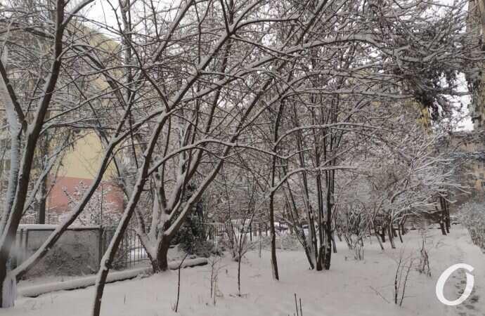 """Зима в Одессе: как выглядит """"спальный"""" район после первого снегопада 2021 года (фото, видео)"""