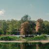 Почему парки Одессы теряют территорию и остались без правовой защиты и статуса
